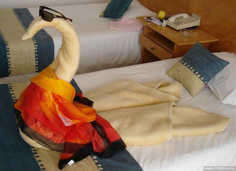 Отдых в Хургаде - Лебедь из полотенца в Египте