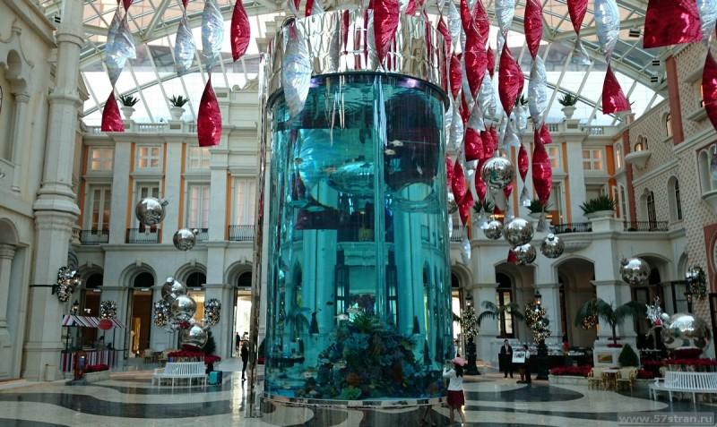Аквариум MGM Macau